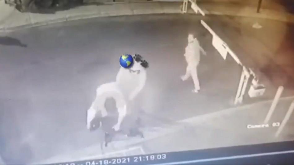Brutal maltrato a perrito en México.