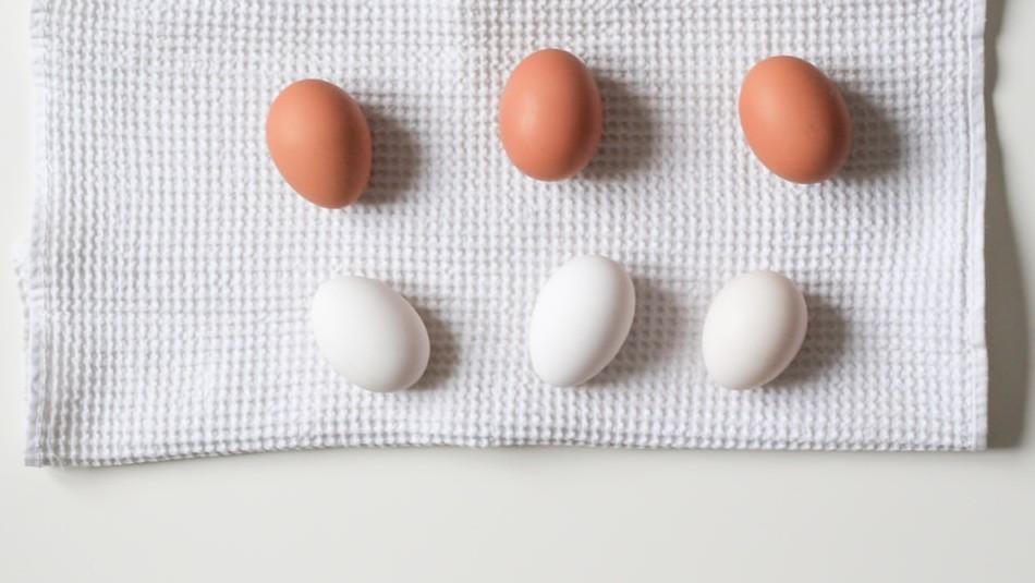 Blancos o de color: Cómo elegir el mejor huevo para tu comida