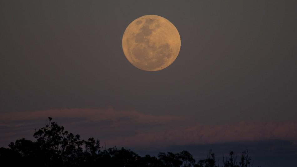 Superluna rosa: ¿Cuándo y cómo se puede ver?