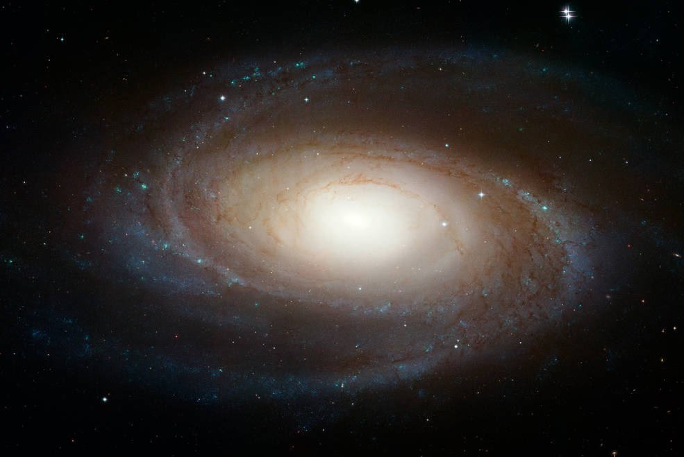 Messier 81, un esempio di come appare una galassia a spirale indeformata
