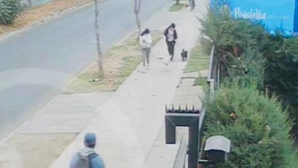 Capturan a conductor que atropelló a niño en Peñalolén.