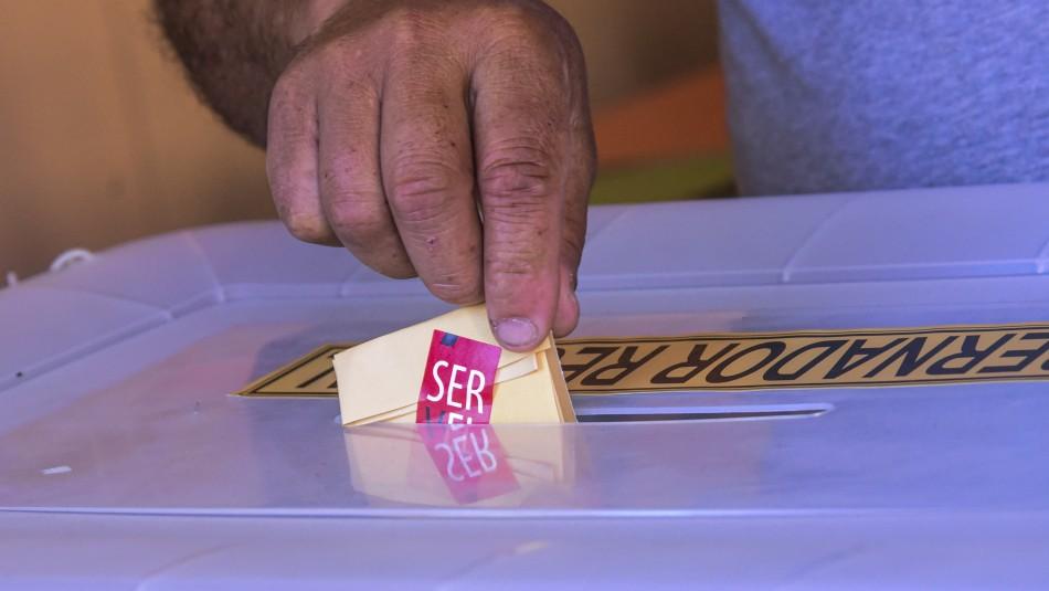 ¿Qué cargos se votan en estas elecciones?