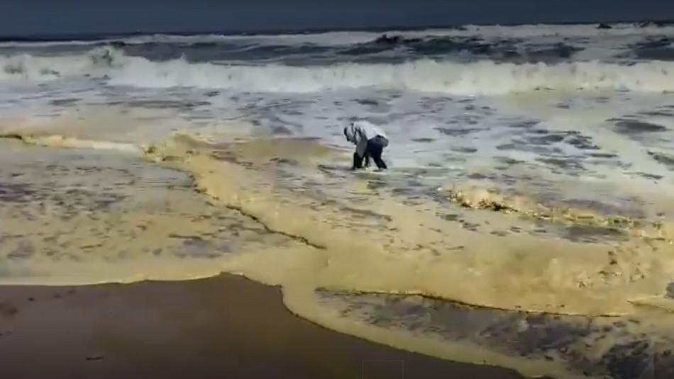 Denuncian posible contaminación en playa de Arica.
