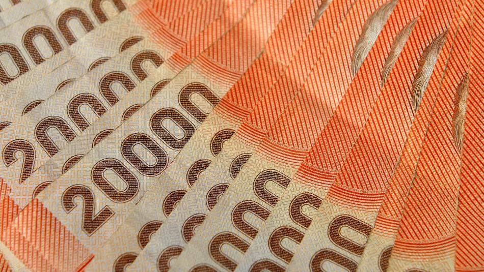 Ingreso Familiar de Emergencia: Conoce si tu familia puede recibir un pago de hasta $759.000