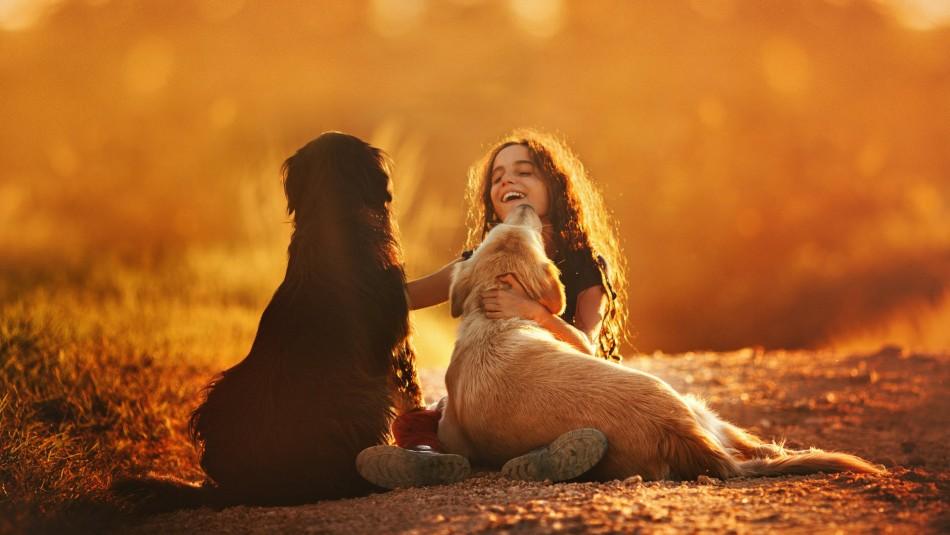 Perros y familia: Las 8 mejores razas para niños