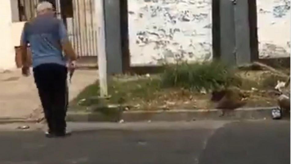 Hombre mata a perro callejero de un disparo en Argentina: Vecinos realizaron protestas