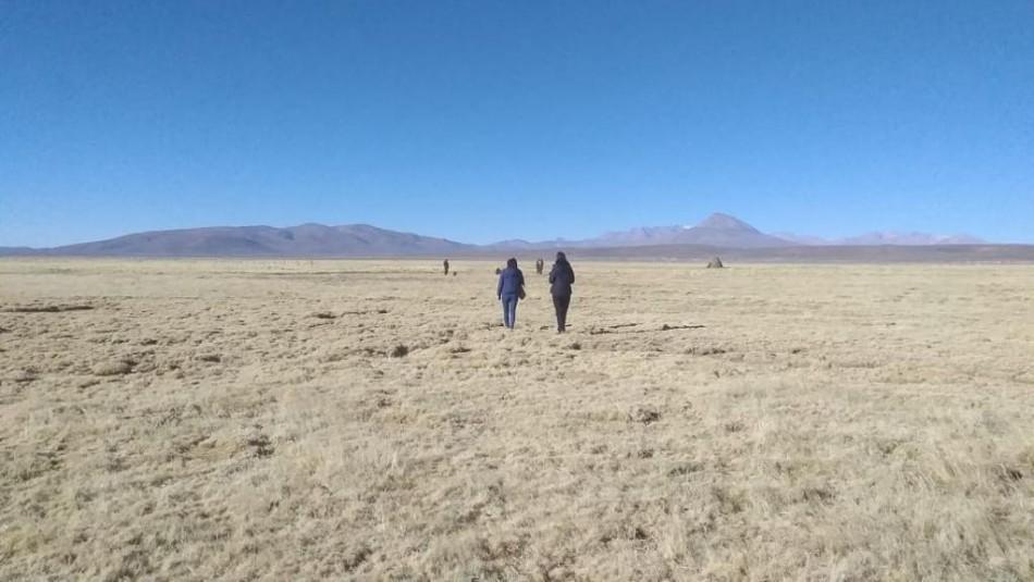 Venezolana muere en el altiplano chileno tras ingresar irregularmente a Chile en caravana