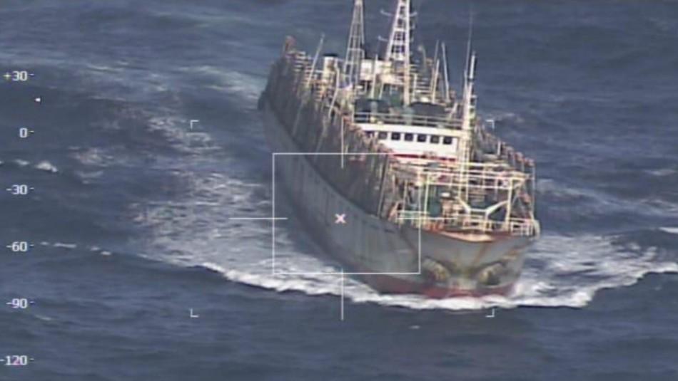 Buscan calamar rojo: Armada fiscaliza a flota extranjera que se desplaza en la costa chilena