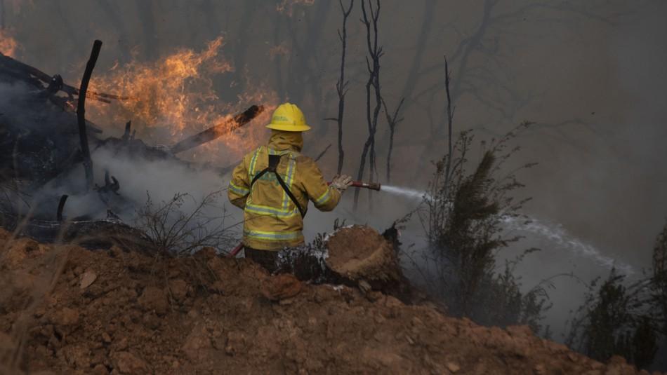 Detienen a joven por su presunta participación en incendio forestal de Lago Peñuelas