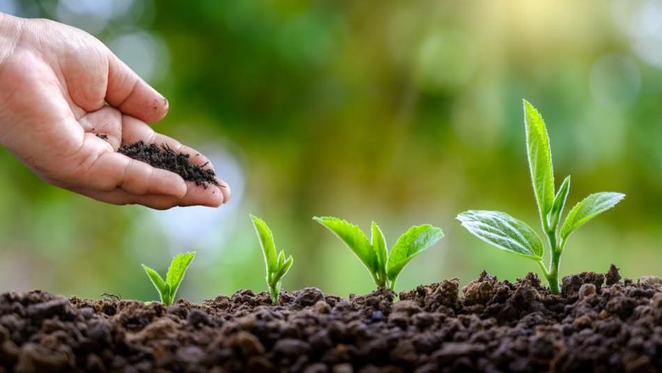 ¿Qué estás haciendo para reducir tu huella medioambiental?