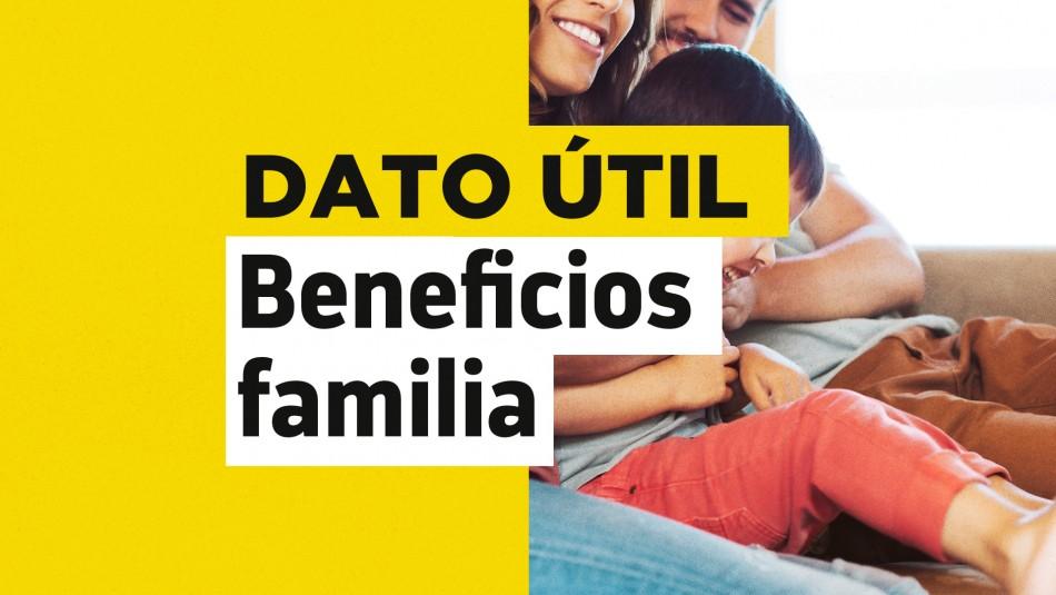 Bonos dignidad familia dueña de casa