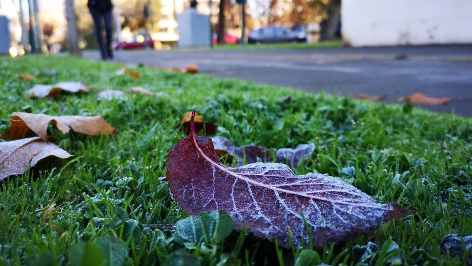 Frío se intensificaría este miércoles en Santiago: Temperatura llegaría a los -2°C