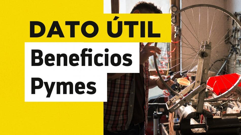 Bono para el pago de cotizaciones pymes