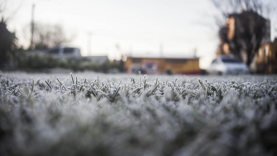 Emiten alerta por ola de frío en zona centro-sur: Temperaturas bajarán hasta los -4 grados