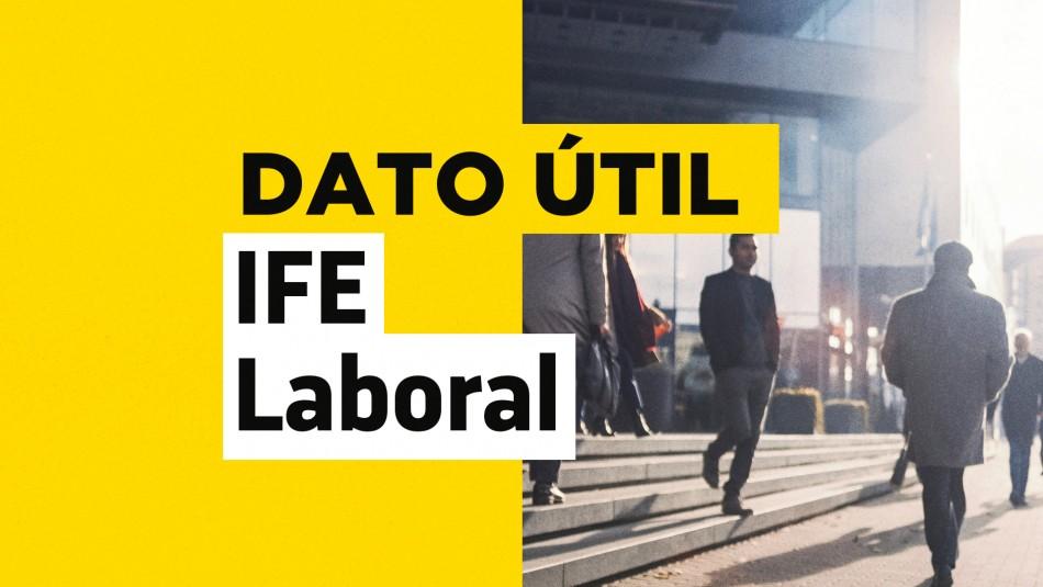 IFE Laboral postulacion