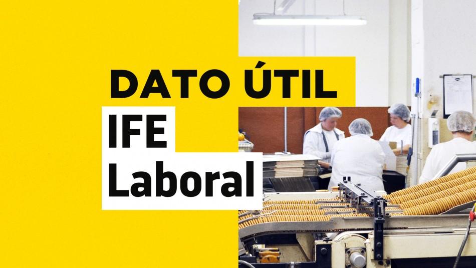 IFE laboral como postular
