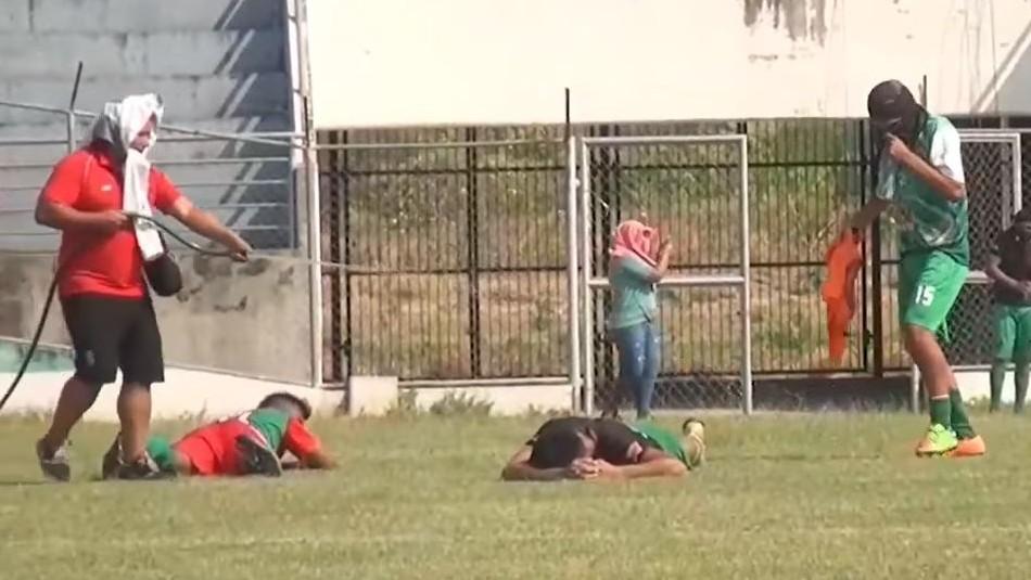 [VIDEO] Abejas atacan a jugadores en pleno partido en Bolivia