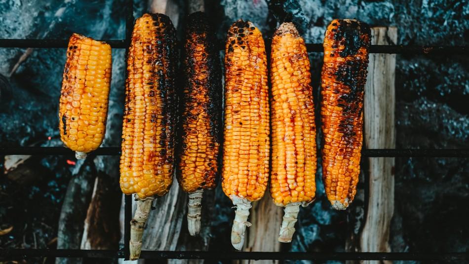 Para la parrilla o la ensalada: Estos son los beneficios del choclo
