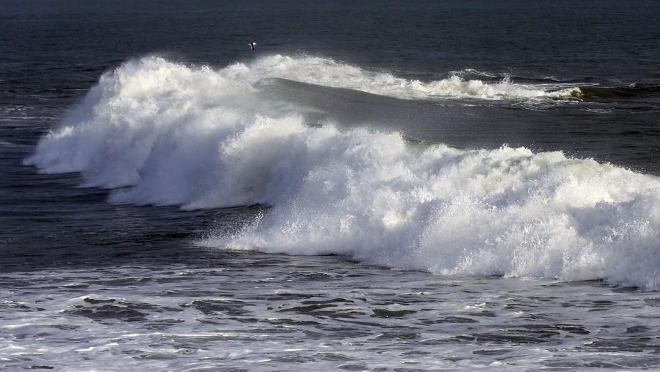 Niño de tres años muere tras caer al mar en Cobquecura