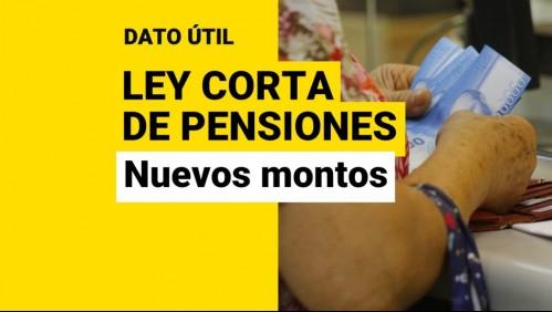 Ley Corta de Pensiones: ¿A cuánto llegarían las jubilaciones con el nuevo Aporte Previsional Solidario?