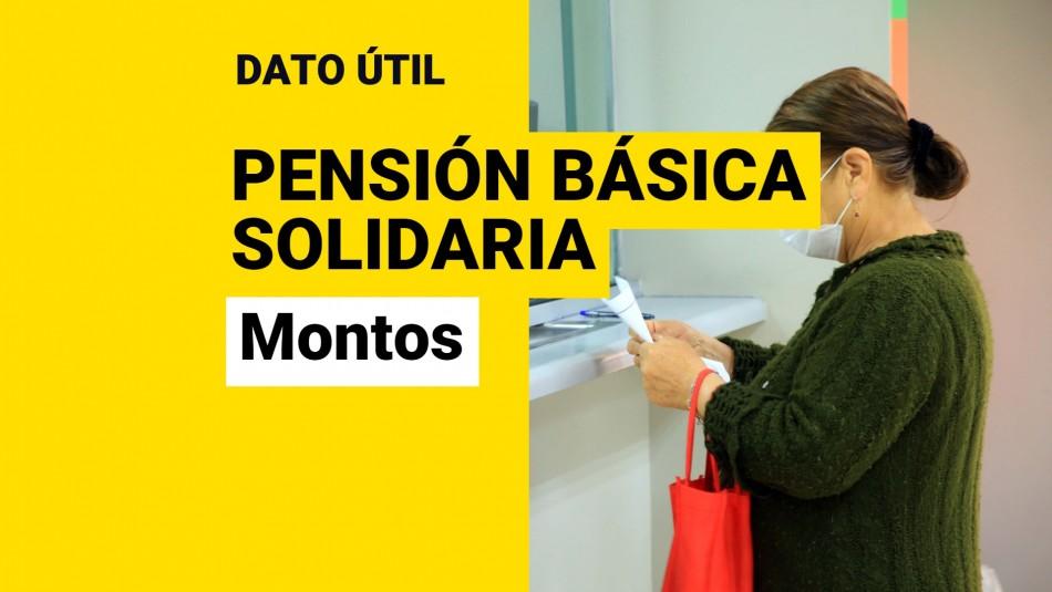 Pensión Básica Solidaria montos ley corta de pensiones