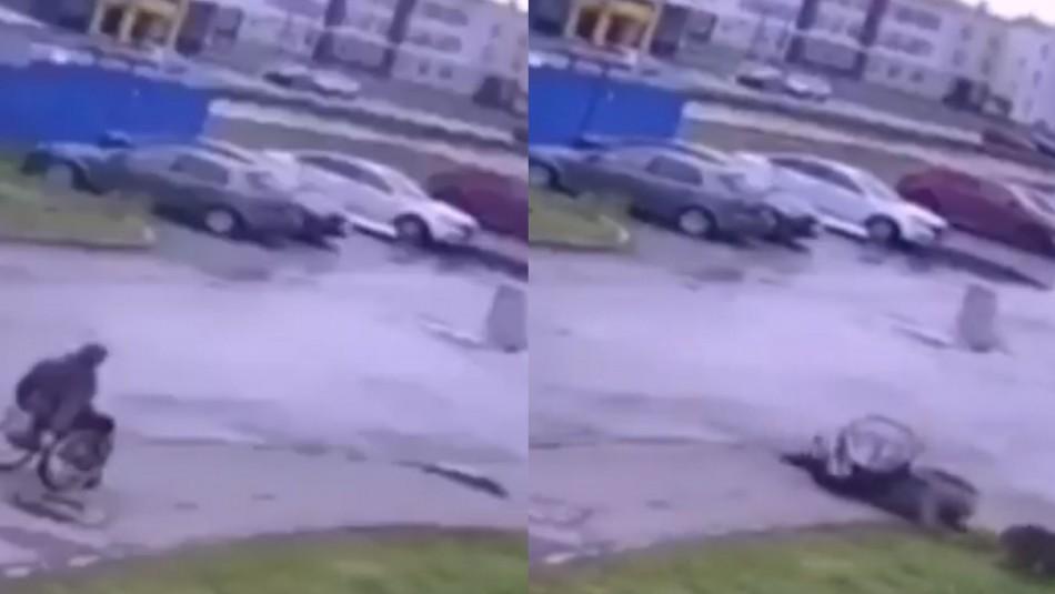 Hombre en silla de ruedas defiende y salva a su perrito de una peligrosa jauría
