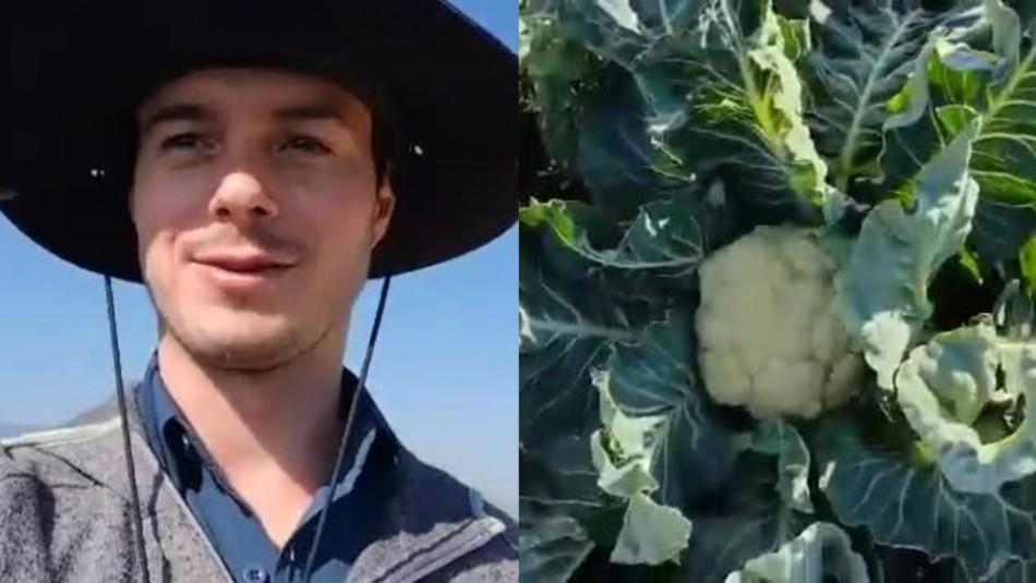 Brócoli coliflor