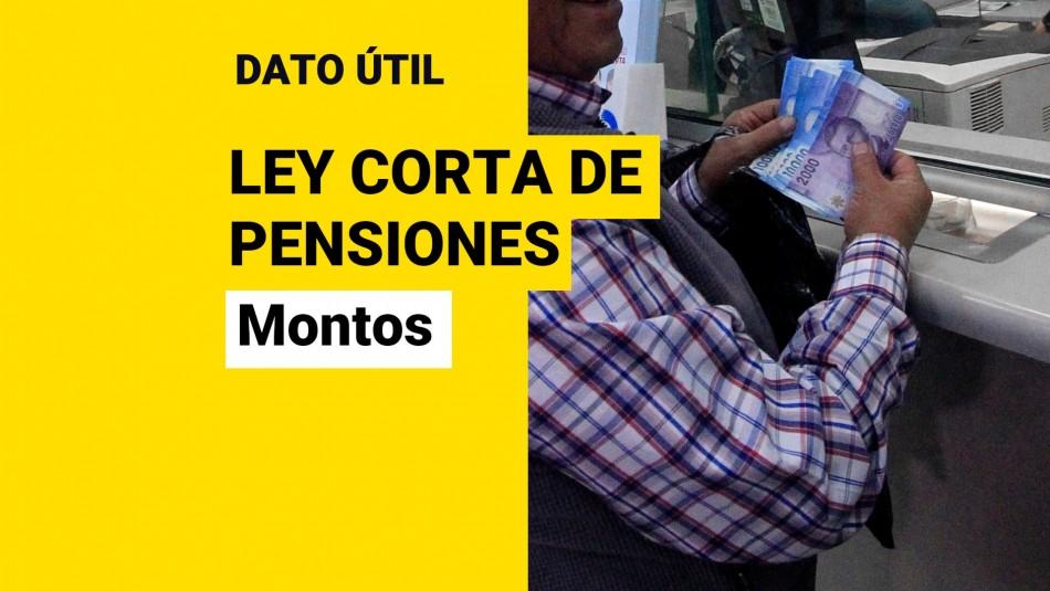 Nuevos montos de pensiones ley corta