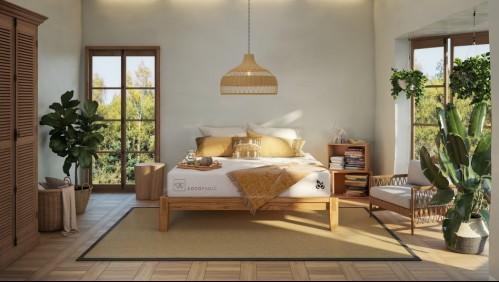 CIC presenta el primer colchón compostable de Chile hecho con fibra de coco 100% natural